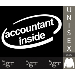 ACCOUNTANT INSIDE