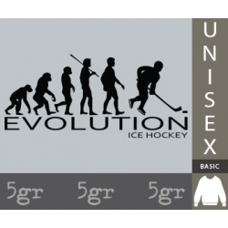 ICE HOCKEY EVOLUTION
