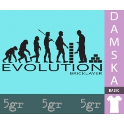BRICKLAYER EVOLUTION