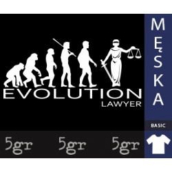 LAWYER EVOLUTION